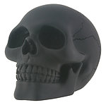 Black  Skull Small Paperweight
