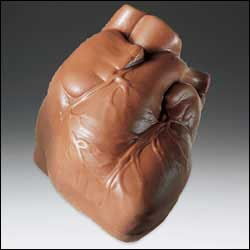 Chocolate Heart-Anatomical Chocolate (Avail Oct-April)