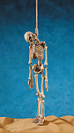 Hangman Hanging Skeleton