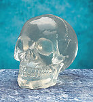 Crystal Clear Skull