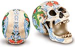 Dragon Rose Tattoo Skull-RARE