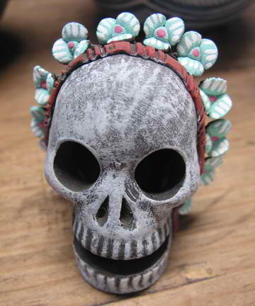 Day of The Dead Skull/Flowers